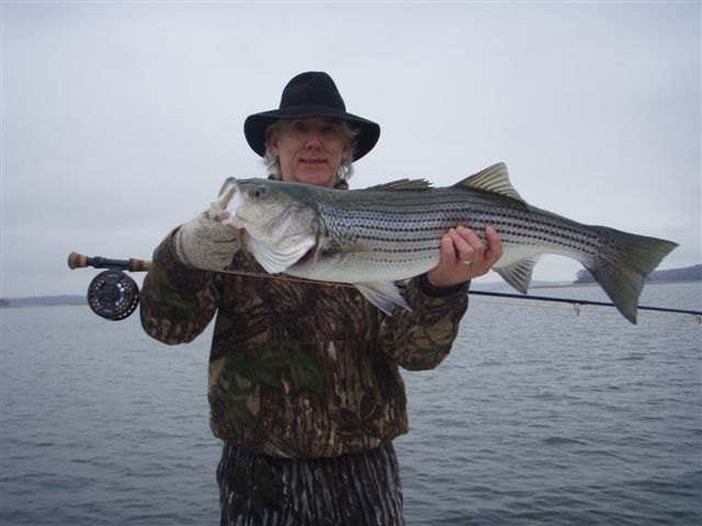Ga fishing hal coleman catching lake lanier stripers on for Lake lanier striper fishing